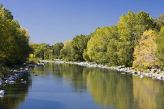 Bow River in Autumn. On a sunny, autumn afternoon, a calm Bow River in Calgary reflects the greenery lining its banks Royalty Free Stock Image