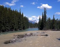 Bow River, Banff National Park, Canada. Royalty Free Stock Photos
