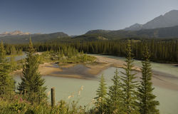 Bow River in Banff National Park Royalty Free Stock Image