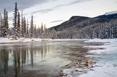 The Bow River in Banff National Park Royalty Free Stock Images