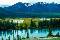 Bow River flowing by the rockies. In Banff National Park from roadside pullout Royalty Free Stock Photography