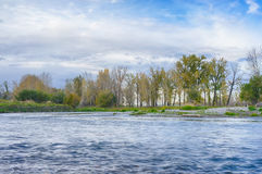Bow River Landscape Royalty Free Stock Photo