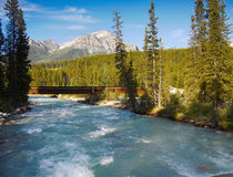 Bow River, Rocky Mountains,  Canada Stock Image
