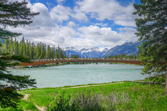 Bow River running around and through Banff Stock Images