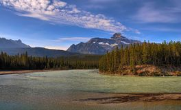 Bow River Shallows royalty free stock images