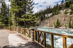 Bow river trail Royalty Free Stock Photo