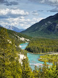 Bow River Valley, Banff National Park Stock Photo