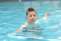 Bow swimming in pool Stock Images