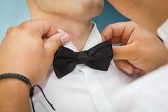 Bow tie. Groom's best man arranges bow tie Royalty Free Stock Photos