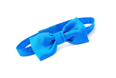 Free Bow Tie Stock Photography - 8373682