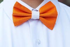 The bow tie. Bartender in a white shirt and an orange bow tie royalty free stock photo