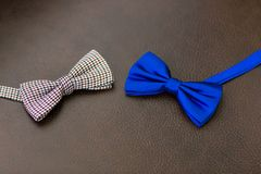 The bow tie Stock Image