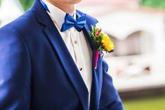 The bow tie Royalty Free Stock Image