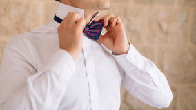 The bow tie. Close the frame Royalty Free Stock Image
