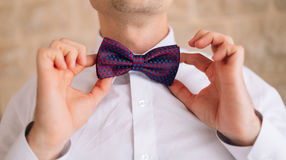 The bow tie. Close the frame Stock Images