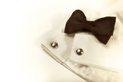 Bow tie and cuff-link, sepia Stock Image