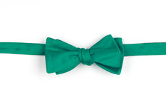 Bow-tie Stock Photography