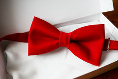 Bow tie in gift box Stock Images