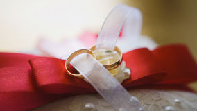 Bow tie groom and wedding rings - accessories Stock Image