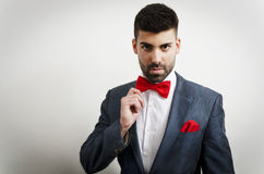 Bow tie and handkerchief. Businessman in a suit with red handkerchief and bow tie Royalty Free Stock Image