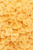 Bow tie pasta forming a background Stock Image