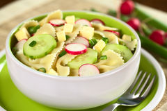 Bow Tie Pasta Salad Stock Photos