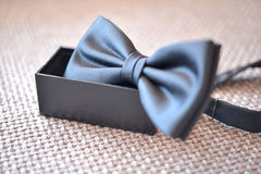 Bow tie with placed in the holder Royalty Free Stock Photography