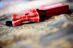 Bow tie with red squares Stock Image