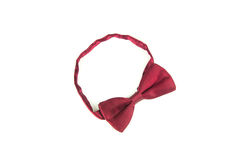 Bow tie on white background Royalty Free Stock Image