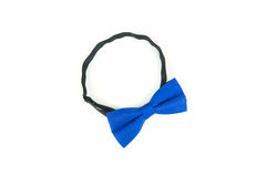 Bow tie on white background Royalty Free Stock Photos