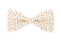Bow tie and white with brown flowers Stock Image