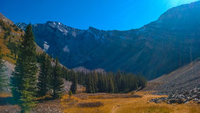 Bow valley  banff colors of autumn mountain cascade amphitheater Royalty Free Stock Photography
