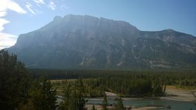 Bow valley banff  mountain tree forest river. Wet land brook fishing mountain stream valley bow river mountain path forest way river valley hoodoo hoodoos clay Royalty Free Stock Photo