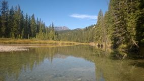 Bow valley banff  mountain tree forest river. Wet land brook fishing mountain stream valley bow river mountain path forest way river valley hoodoo hoodoos clay Stock Photography