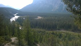 Bow valley banff  mountain. Wet land brook fishing mountain stream valley bow river mountain path forest way river valley Royalty Free Stock Image