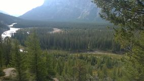 Bow valley banff  mountain. Wet land brook fishing mountain stream valley bow river tunnel mountain path forest way river valley Stock Photos