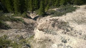 Bow valley banff river hoodoos. Hoodoo river formation path forest beginning hoodoo run off mountain Stock Image