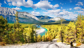 Bow Valley, Canadian Rockies. Bow Valley and Bow River, Banff National park, Canadian Rockies, Alberta, Canada Stock Photos