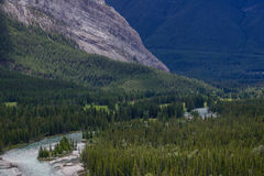 Bow valley near Banff in the canadian rockies. Canada royalty free stock images