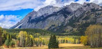 Bow Valley Parkway Stock Photos