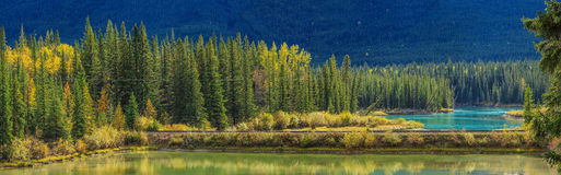 Bow Valley Parkway Stock Photo