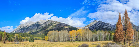 Bow Valley Parkway Royalty Free Stock Photography