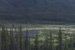 Bow Valley Parkway in Banff National Park Royalty Free Stock Photos