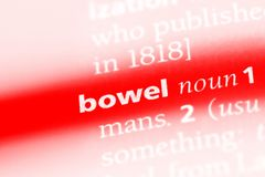 Bowel. Word in a dictionary.  concept royalty free stock photo