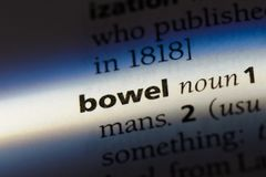 Bowel. Word in a dictionary.  concept stock photos