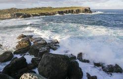 bowen ön Booderee nationalpark NSW australasian Arkivbilder