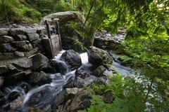 Bowen Island Long Exposure Mountains. Water meandering through Bridal Creek, Bowen Island, BC, Canada Royalty Free Stock Image