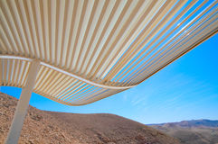 The bower. Fragment of the bower in Judea desert Stock Photography