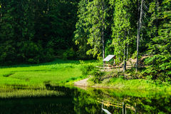 Bower near forest lake at sunrise Royalty Free Stock Image