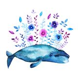 Bowhead whale illustration. Watercolor illustration with Bowhead whale and floral elements stock illustration